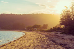 Calm sunny beach with sunset in background Royalty Free Stock Photos