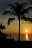 Calm Sunset Stock Photos