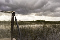 Calm swamp and reeds under storm clouds Royalty Free Stock Images