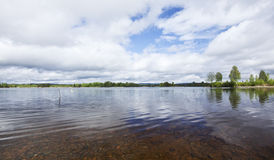 Calm Swedish lake with clear water Royalty Free Stock Photography