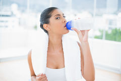 Calm toned brunette with towel drinking from sports bottle Stock Image