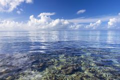 Calm tropical sea over coral reef Stock Image