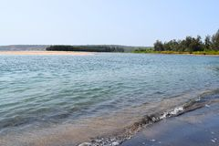 Calm Ware Beach with Clean Blue Water, Trees and an Island Royalty Free Stock Image