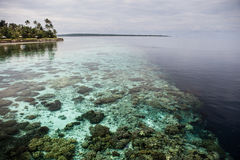Calm Water and Fringing Reef in Tropical Pacific Stock Images