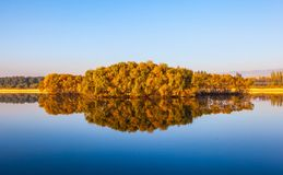 Calm water in late autumn Royalty Free Stock Photography