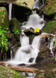 Calm waterfall. Beautiful peaceful waterfall between stones and autumn vegetation Royalty Free Stock Photography