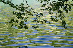 Calm Waters. Plitvice. Reflections on the surface of a lake in Plitvice, Croatia Stock Photo