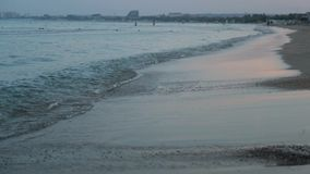 Calm waves on the beach, Morning at sea, sunrise, looping stock footage