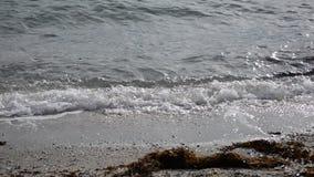 Calm waves hitting sandy sea shore in late autumn. Sunshine stock video footage