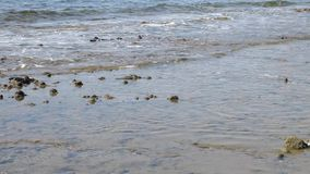 Calm waves washes beach stock video footage