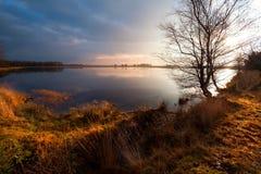 Calm wild pond in Dwingelderveld Stock Photo