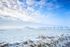 Calm winter landscape Royalty Free Stock Images