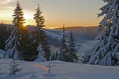 Calm winter morning Stock Photography