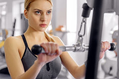 Calm woman working out on equipment. Serious young female making exercise on triceps with pulldown station in fitness center. Portrait Royalty Free Stock Image
