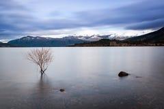 Calma 01 de la mañana del lago Imagen de archivo