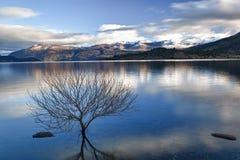 Calma 05 de la mañana del lago Foto de archivo