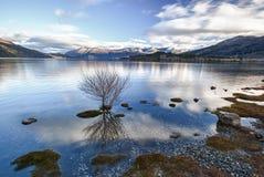Calma 07 de la mañana del lago Foto de archivo