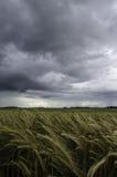 Calma antes de la tormenta Foto de archivo