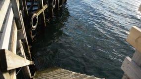 A calma bonita acena com reflexão da luz do sol na superfície com as escadas de madeira do cais que entram para baixo na água vídeos de arquivo