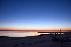 Calma da madeira lançada à costa Fotografia de Stock Royalty Free