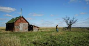 Calma del cowboy fotografia stock