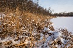 Calma del invierno foto de archivo