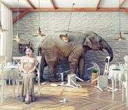 Calma dell'elefante in un ristorante illustrazione di stock