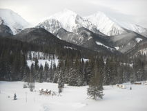 Calma di inverno Fotografia Stock Libera da Diritti