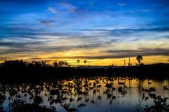 Calma e tramonto sopra la palude Immagine Stock