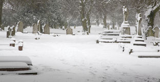 Calma invernal Imagem de Stock