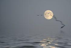 Calma sobre el océano en el polvo de la mañana Foto de archivo libre de regalías