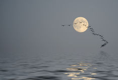 Calma sobre o oceano na poeira da manhã Foto de Stock Royalty Free