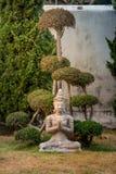 Calma y meditación Foto de archivo