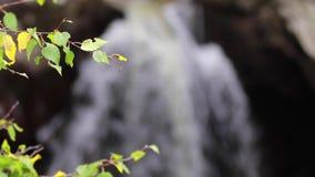 Calmando, calme la cascada durante septiembre en Escocia Las aguas de la vida Caídas de Buar almacen de metraje de vídeo