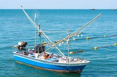 Calmar chassant le flotteur de bateau en mer bleue images stock