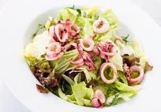 Calmar et salade Photographie stock libre de droits