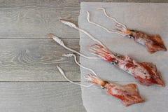 Calmars frais sur la table en bois Images libres de droits