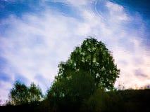 Calme Autumn Pond image stock