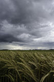 Calme avant la tempête Photo stock