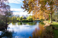 Calming autumn scene Royalty Free Stock Photography