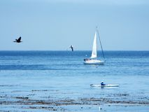 A calming day on the sea stock photo
