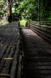 Calming feeling on this long bridge to nature. Royalty Free Stock Photos