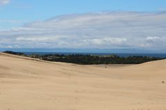 Sand dunes. Calming peace wallpaper scenery beautiful background tress leaves sanddunes Royalty Free Stock Photography