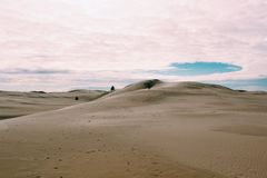 Sand dunes. Calming peace wallpaper scenery beautiful background tress leaves sanddunes Stock Images