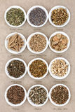 Calming and Sleeping Herb Selection Stock Photos