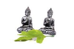 Calmness. Beautiful shot of buddha idols with green leaf on white background Royalty Free Stock Photo