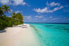 Calmness coastline Stock Image