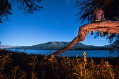 Calmness night. Patagonia landscape nature vegetation Royalty Free Stock Photo