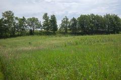 Calmo abra a opinião do campo dentro de Bruce Trails Splitrock Narrows fotografia de stock royalty free