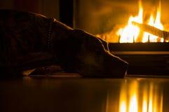 Calor e aconchego Imagens de Stock Royalty Free